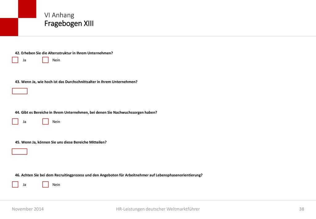 VI Anhang Fragebogen XIII