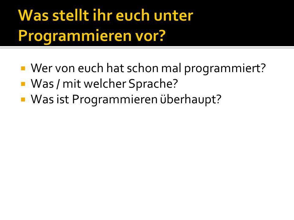 Was stellt ihr euch unter Programmieren vor
