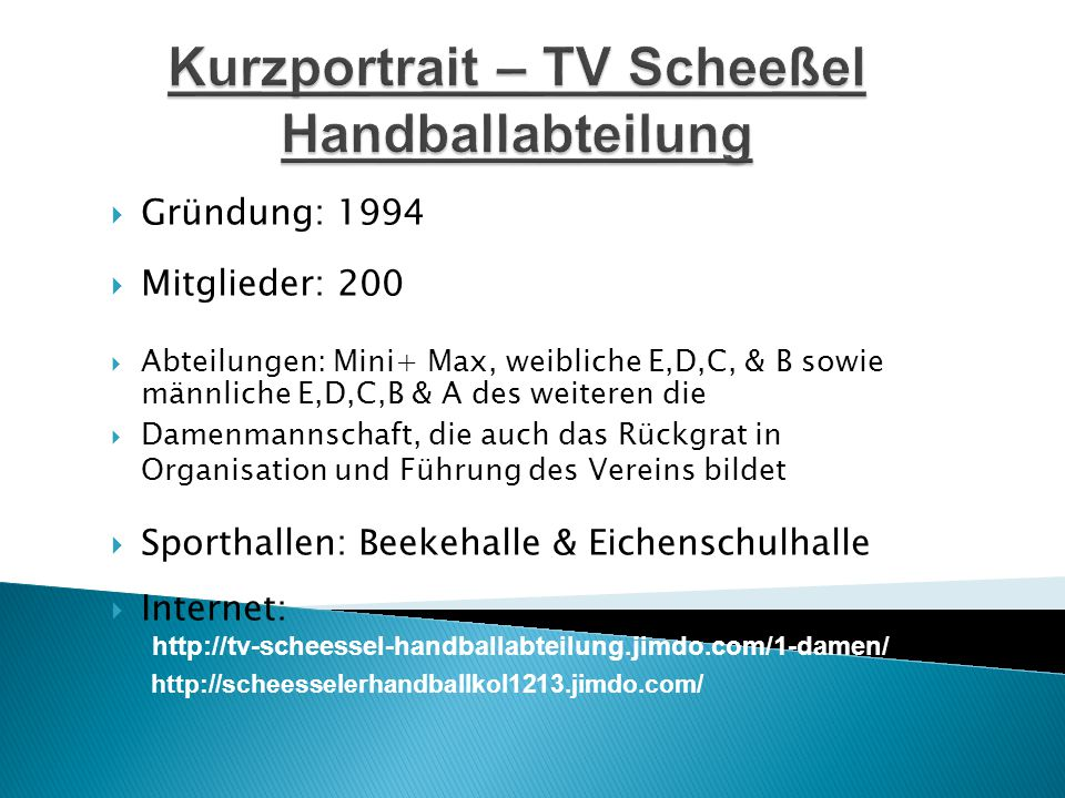 Kurzportrait – TV Scheeßel Handballabteilung