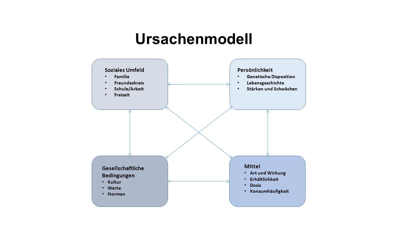 Ursachenmodell Soziales Umfeld Persönlichkeit