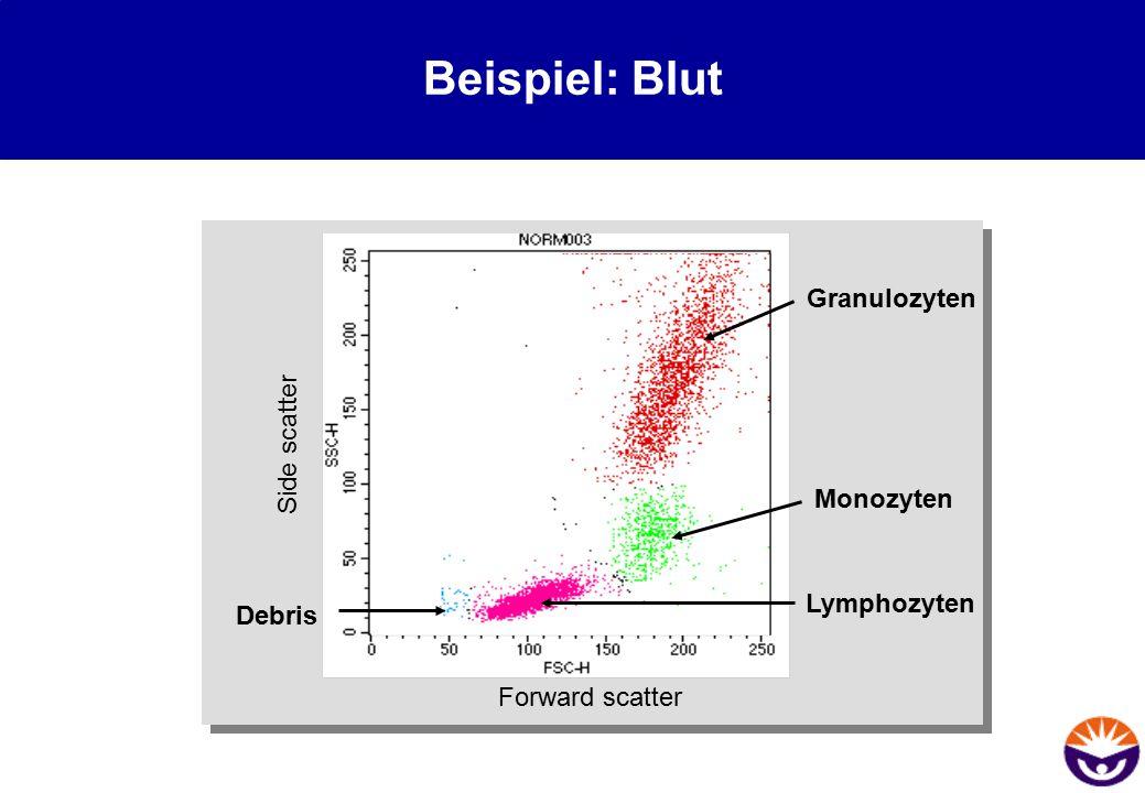 Beispiel: Blut Granulozyten Side scatter Monozyten Lymphozyten Debris