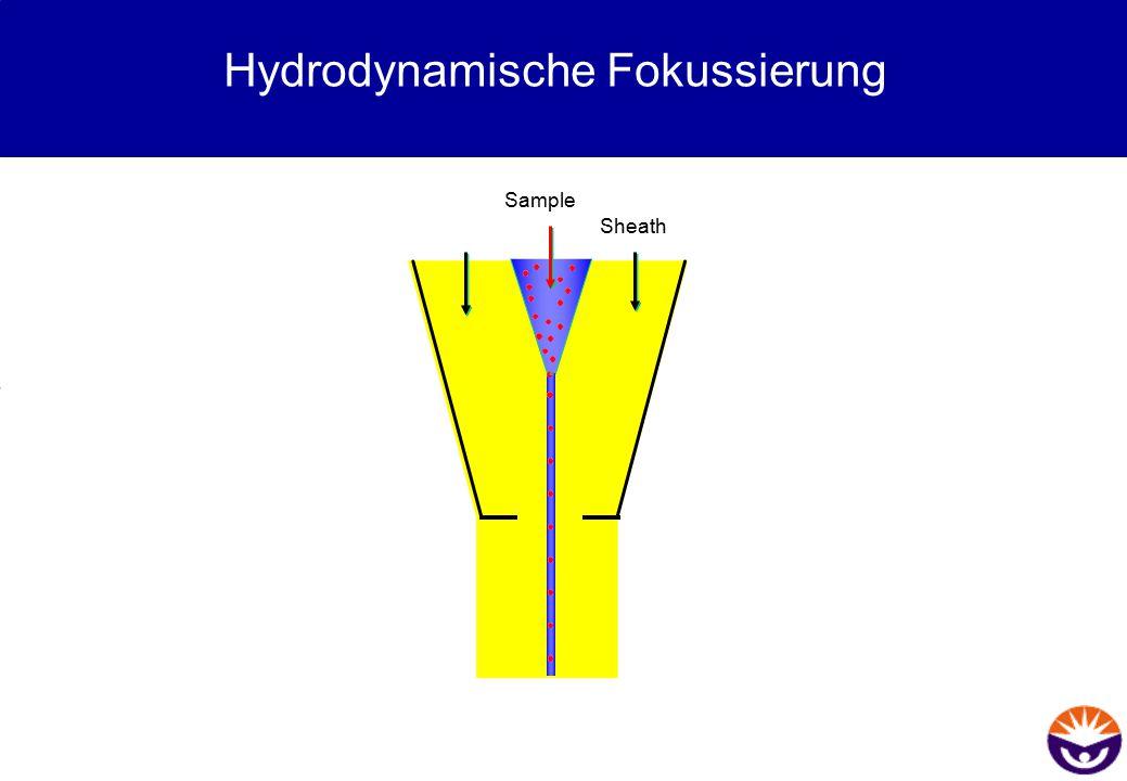 Hydrodynamische Fokussierung