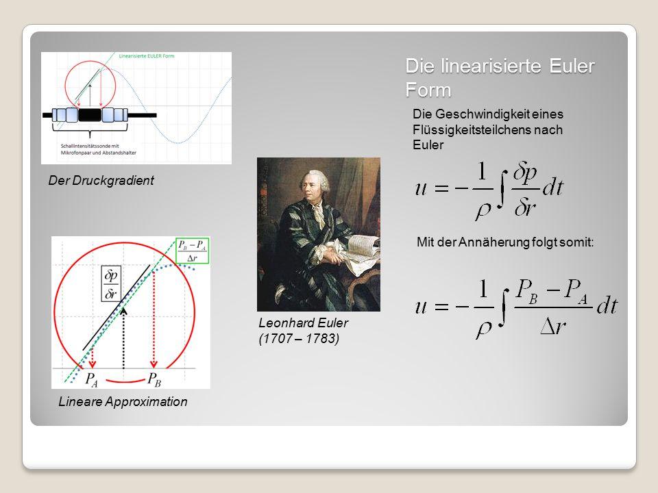 Die linearisierte Euler Form