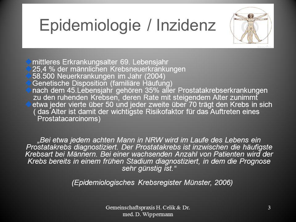 Epidemiologie / Inzidenz