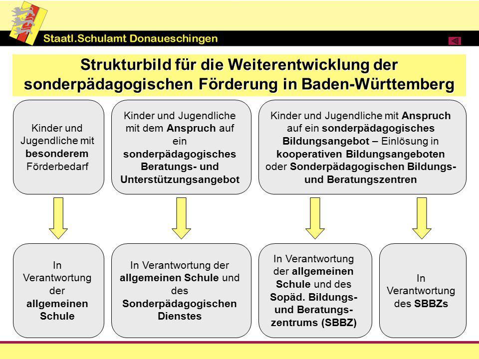 Strukturbild für die Weiterentwicklung der sonderpädagogischen Förderung in Baden-Württemberg