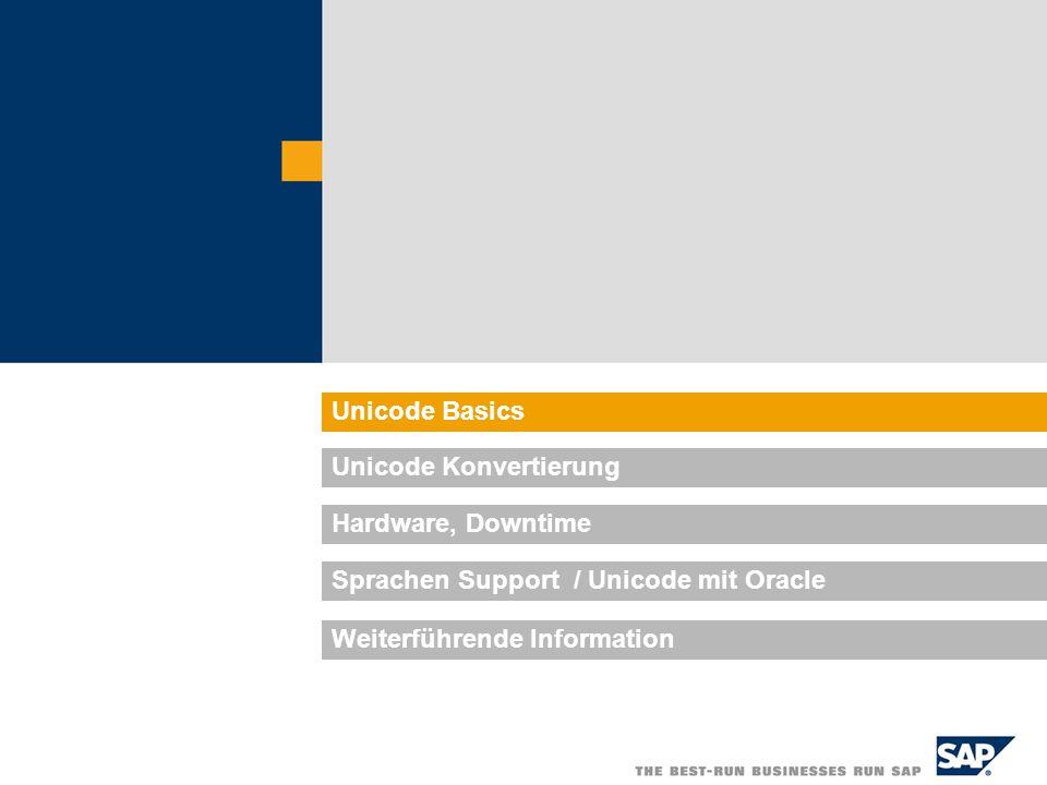 Unicode Basics Unicode Konvertierung. Hardware, Downtime. Sprachen Support / Unicode mit Oracle.