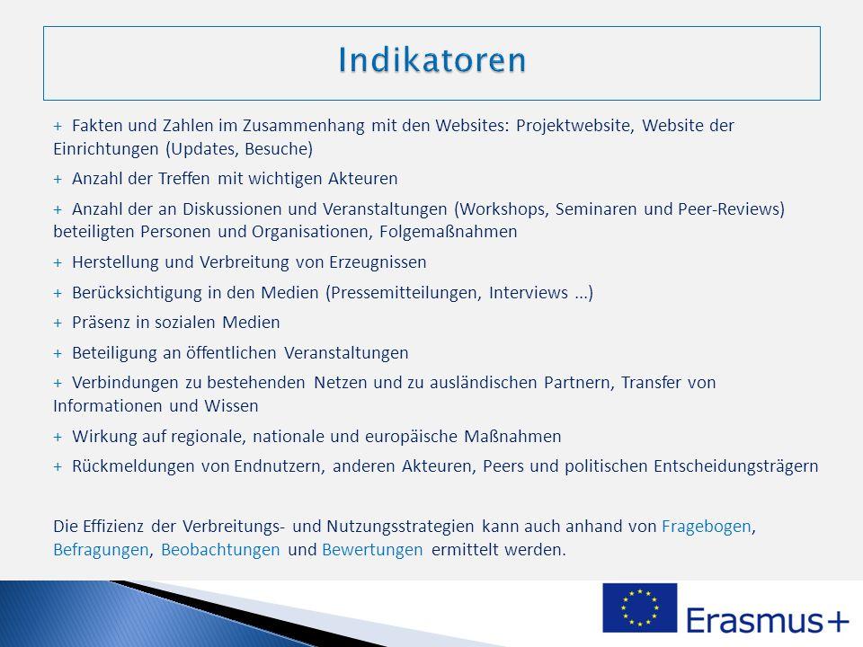 Indikatoren Fakten und Zahlen im Zusammenhang mit den Websites: Projektwebsite, Website der Einrichtungen (Updates, Besuche)