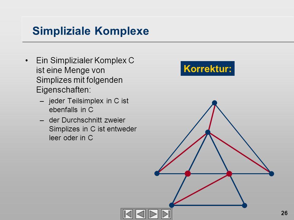 Simpliziale Komplexe Korrektur: