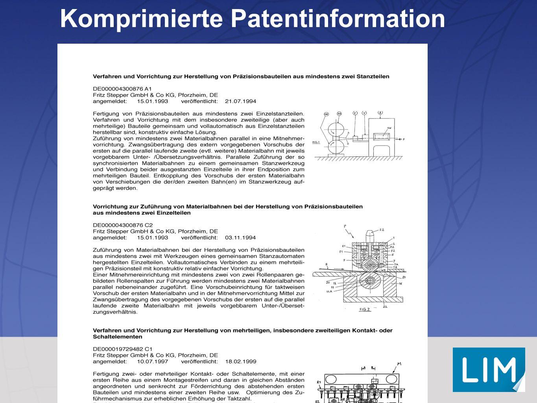 Komprimierte Patentinformation