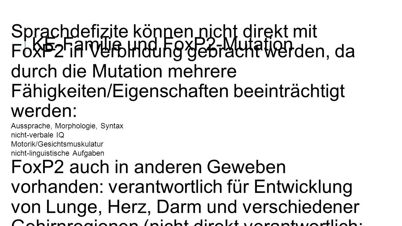 KE-Familie und FoxP2-Mutation