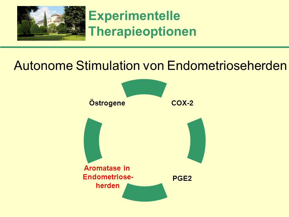 Experimentelle Therapieoptionen