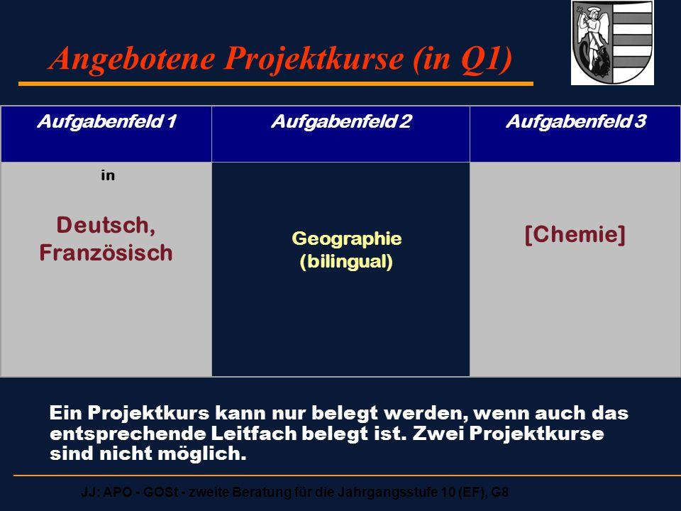 Angebotene Projektkurse (in Q1)
