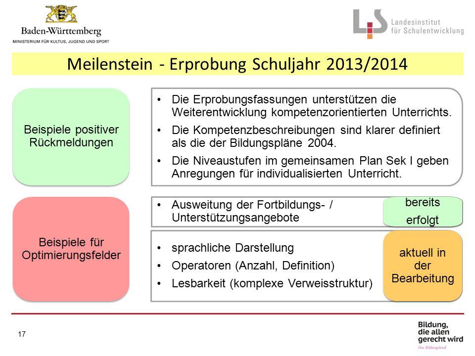 Meilenstein - Erprobung Schuljahr 2013/2014