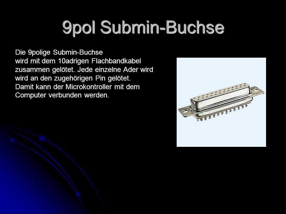 9pol Submin-Buchse Die 9polige Submin-Buchse