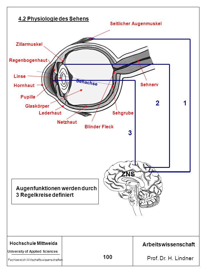 2 1 3 ZNS 4.2 Physiologie des Sehens Augenfunktionen werden durch