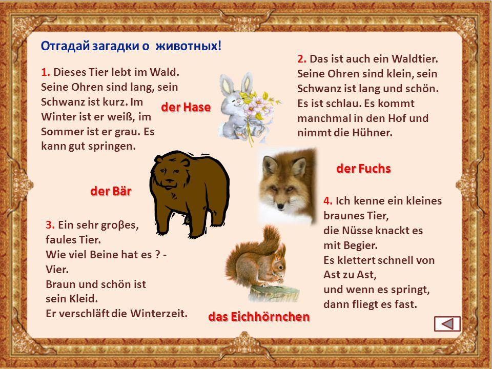 Отгадай загадки о животных!