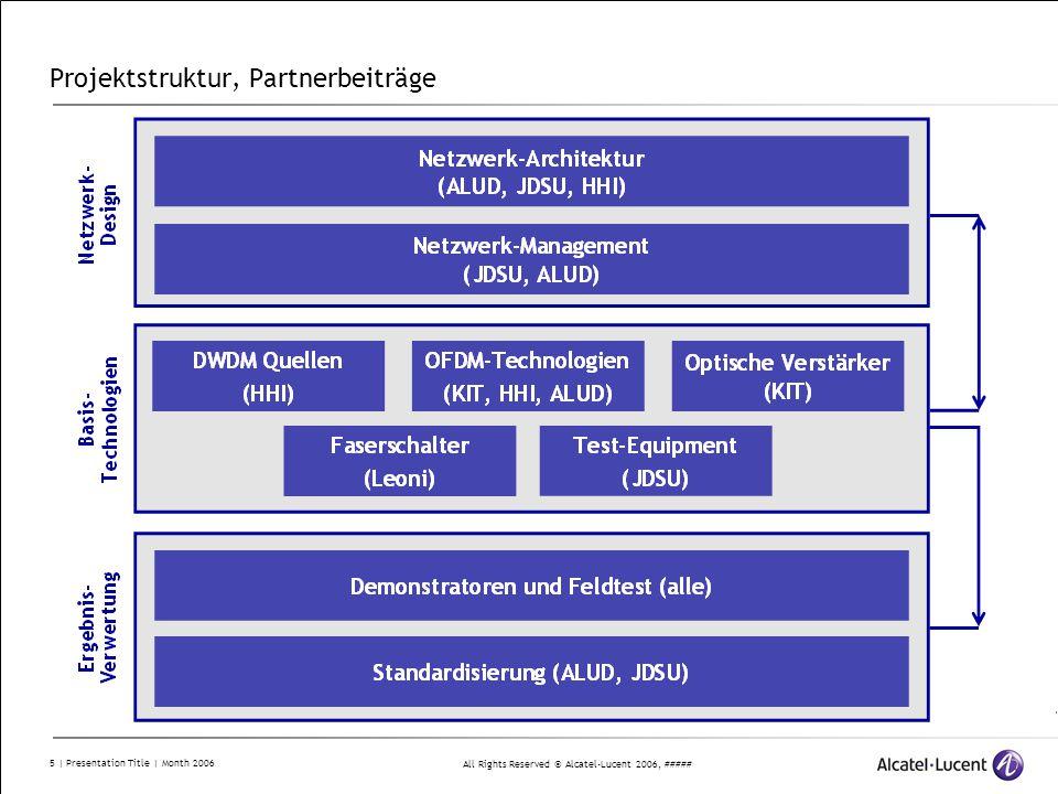 Projektstruktur, Partnerbeiträge