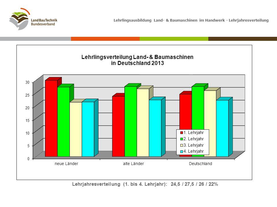 Lehrjahresverteilung (1. bis 4. Lehrjahr): 24,5 / 27,5 / 26 / 22%