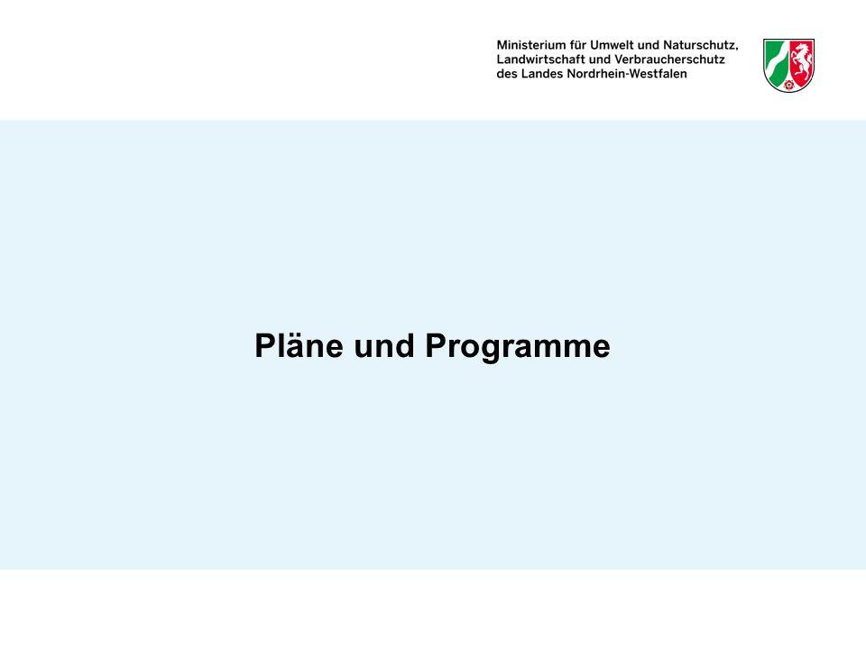 Pläne und Programme