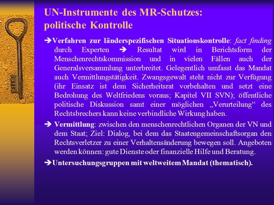 UN-Instrumente des MR-Schutzes: politische Kontrolle
