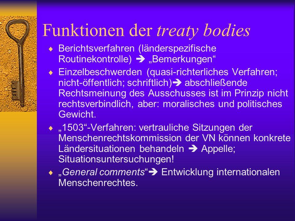 Funktionen der treaty bodies