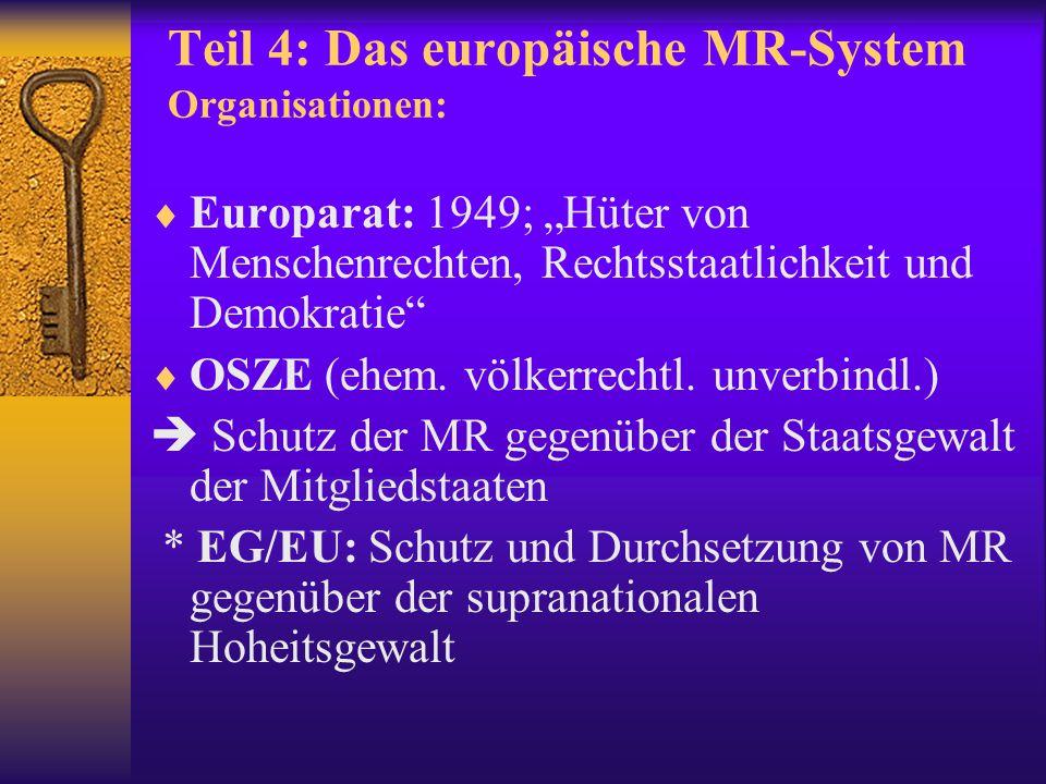 Teil 4: Das europäische MR-System Organisationen: