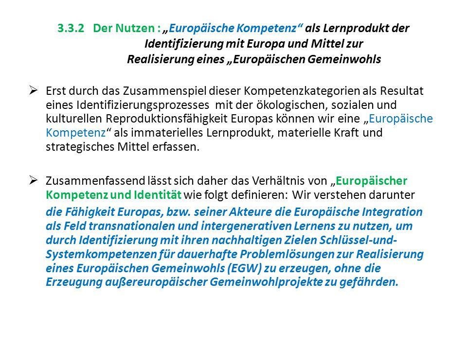 """3.3.2 Der Nutzen : """"Europäische Kompetenz als Lernprodukt der Identifizierung mit Europa und Mittel zur Realisierung eines """"Europäischen Gemeinwohls"""