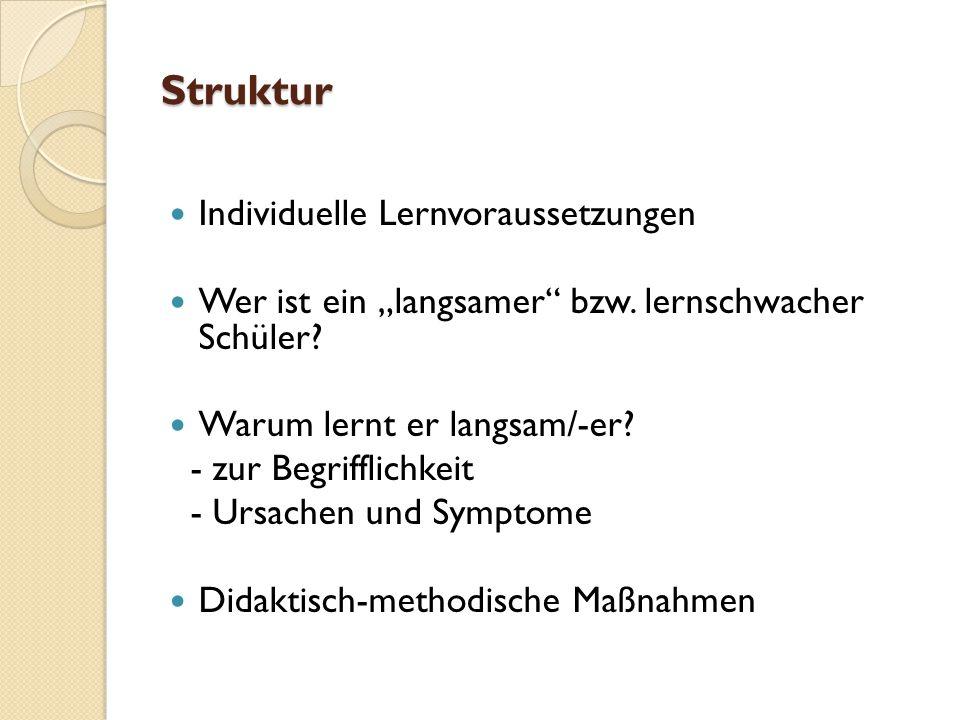 Struktur Individuelle Lernvoraussetzungen
