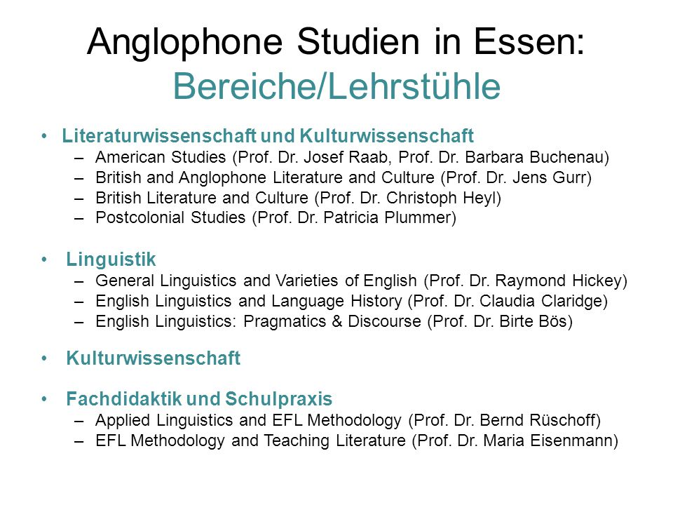 Anglophone Studien in Essen: Bereiche/Lehrstühle