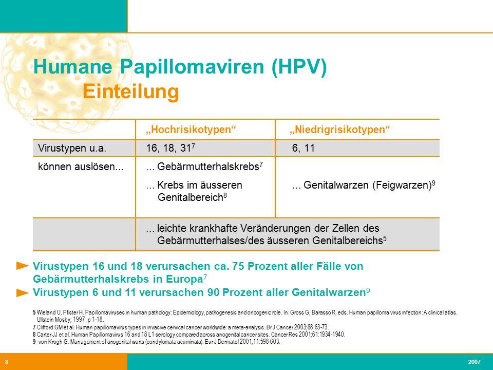 Humane Papillomaviren (HPV) Einteilung