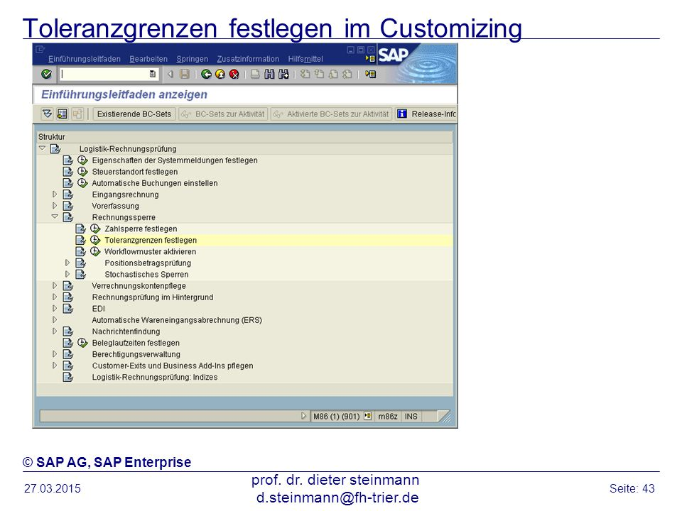 Toleranzgrenzen festlegen im Customizing