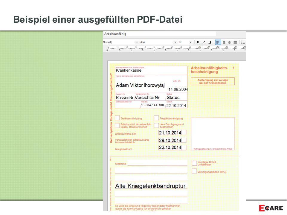 Beispiel einer ausgefüllten PDF-Datei