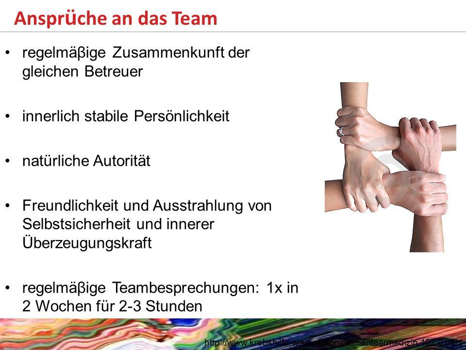 Ansprüche an das Team regelmäβige Zusammenkunft der gleichen Betreuer