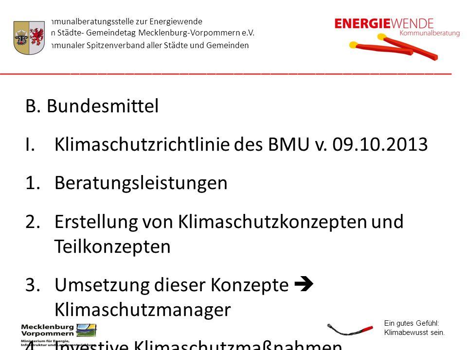 Klimaschutzrichtlinie des BMU v. 09.10.2013 Beratungsleistungen