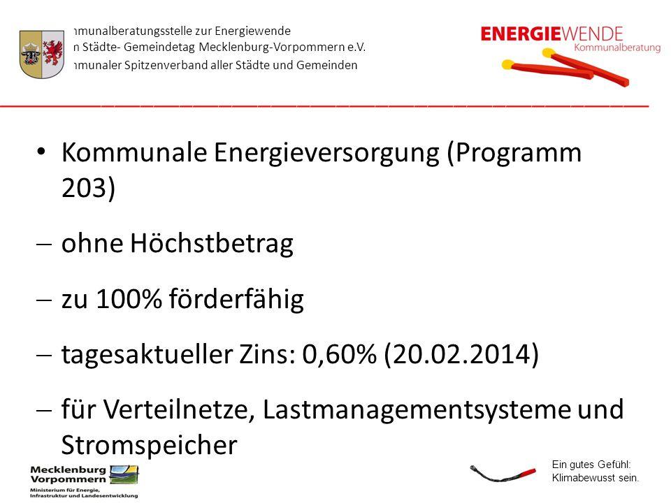 Kommunale Energieversorgung (Programm 203) ohne Höchstbetrag