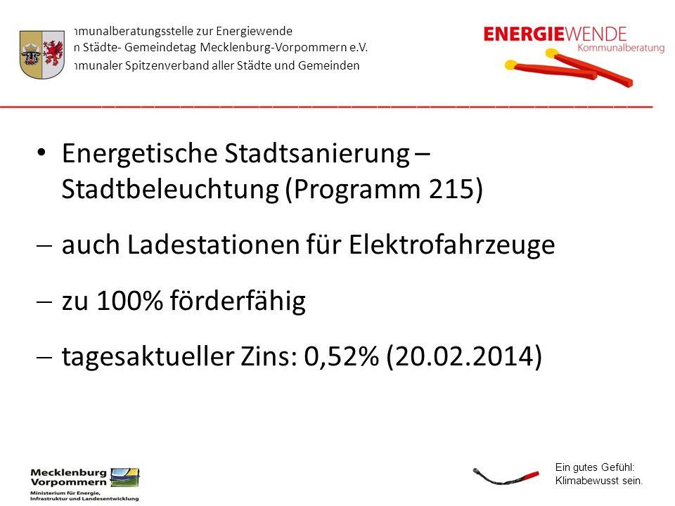 Energetische Stadtsanierung – Stadtbeleuchtung (Programm 215)