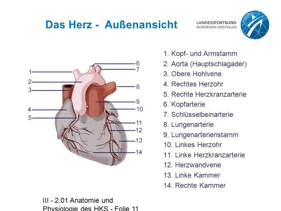 Das Herz - Außenansicht