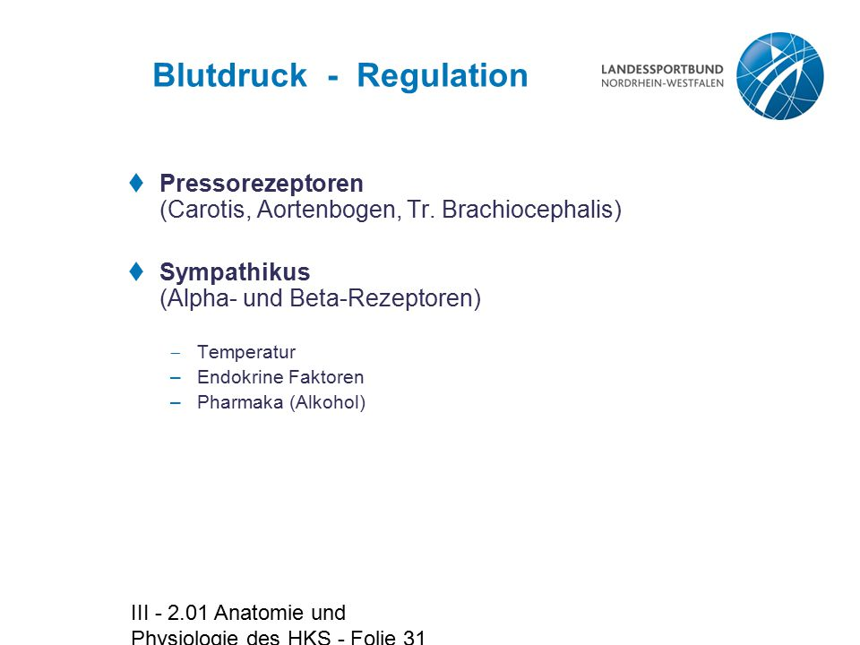 Blutdruck - Regulation