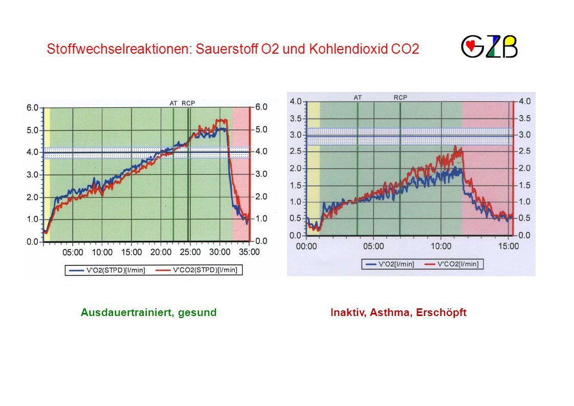 Stoffwechselreaktionen: Sauerstoff O2 und Kohlendioxid CO2