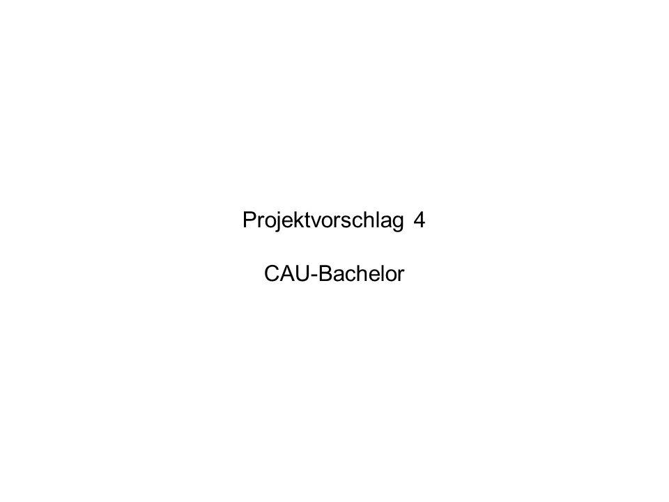 Projektvorschlag 4 CAU-Bachelor