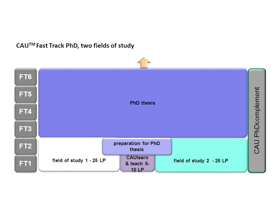 preparation for PhD thesis