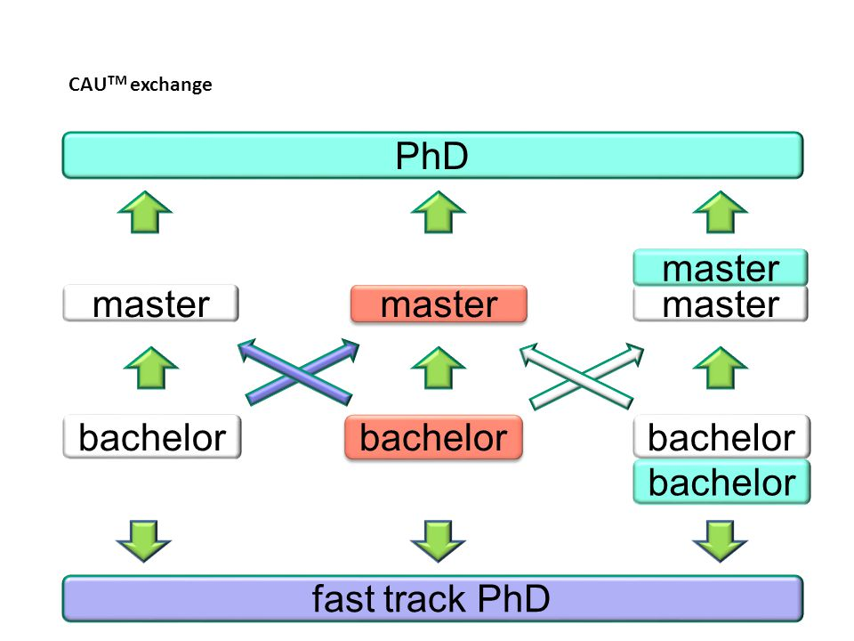PhD master master master master bachelor bachelor bachelor bachelor