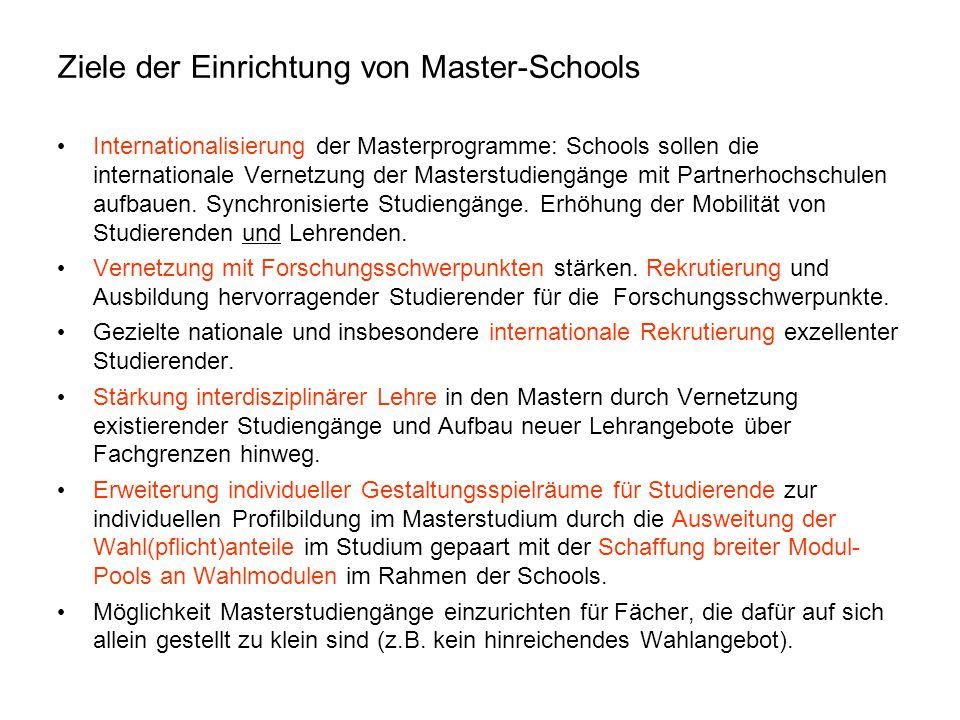 Ziele der Einrichtung von Master-Schools