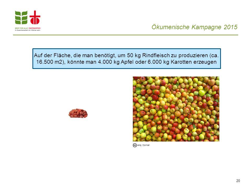 Auf der Fläche, die man benötigt, um 50 kg Rindfleisch zu produzieren (ca. 16.500 m2), könnte man 4.000 kg Apfel oder 6.000 kg Karotten erzeugen