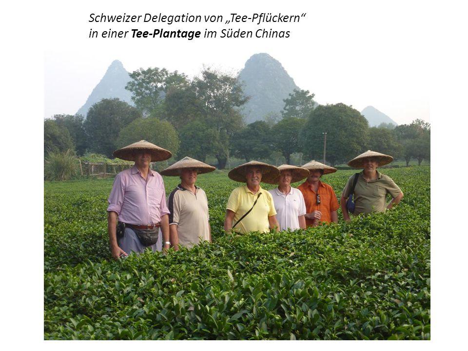"""Schweizer Delegation von """"Tee-Pflückern"""
