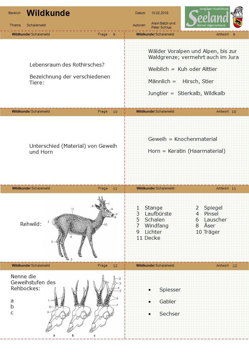 Wälder Voralpen und Alpen, bis zur Waldgrenze; vermehrt auch im Jura