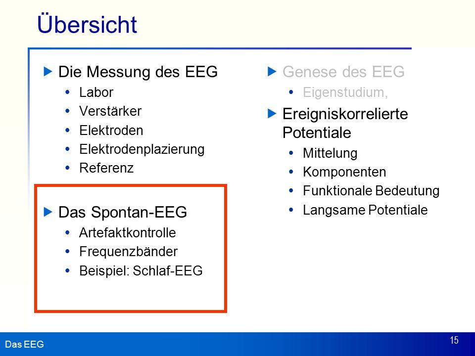 Übersicht Die Messung des EEG Das Spontan-EEG Genese des EEG
