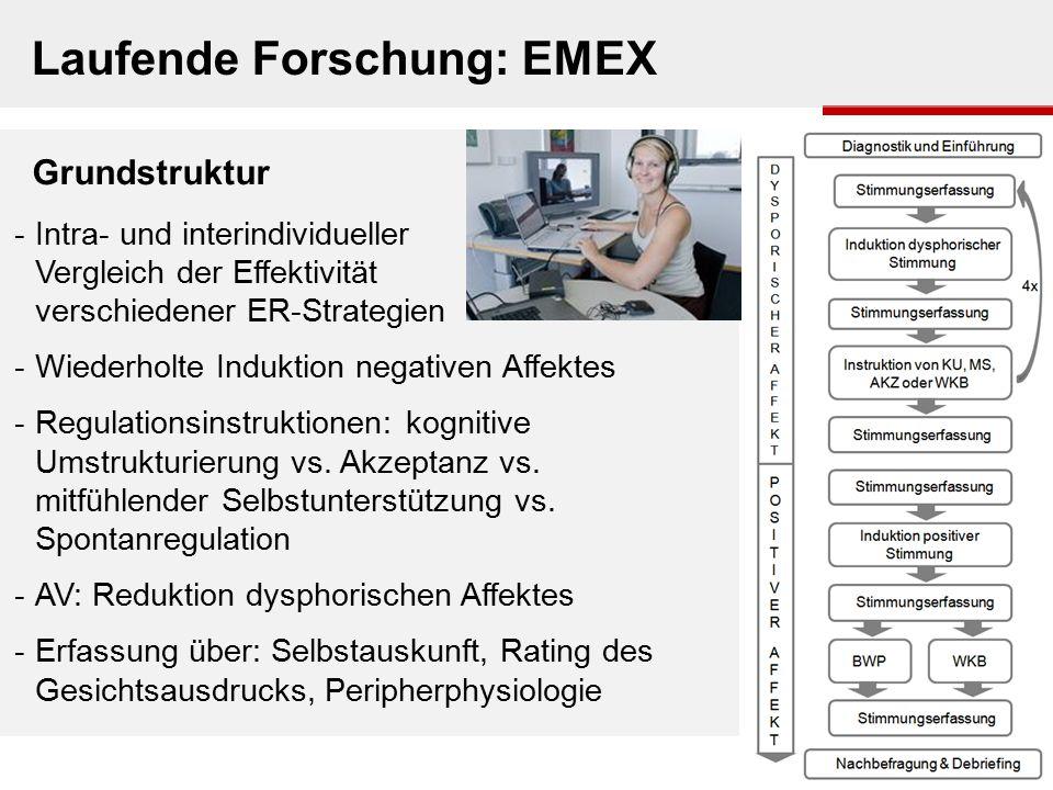 Laufende Forschung: EMEX