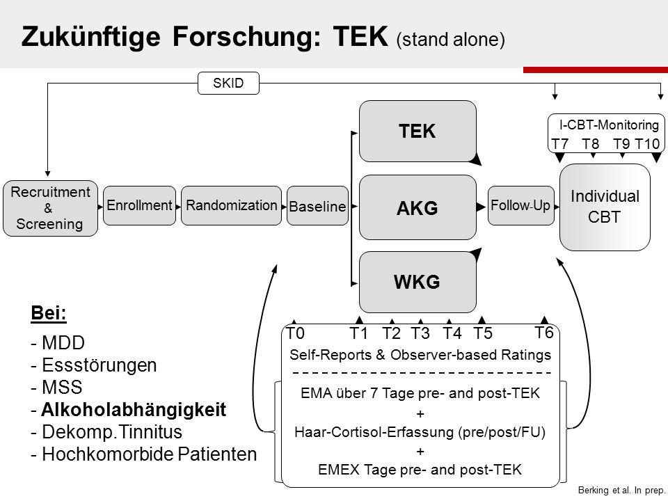 Zukünftige Forschung: TEK (stand alone)