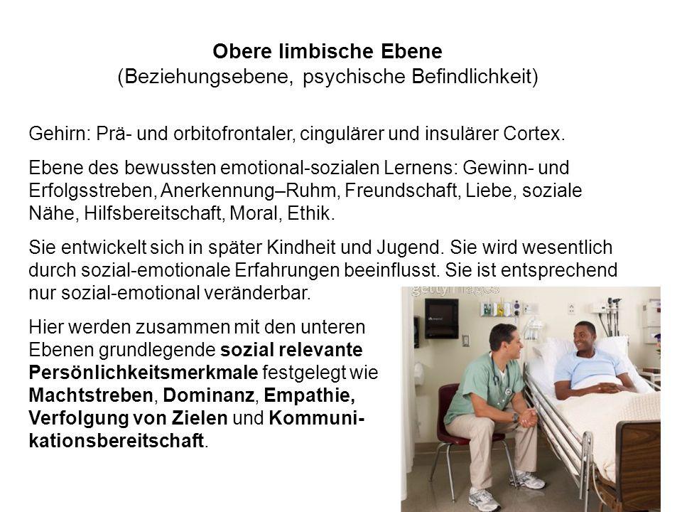 Obere limbische Ebene (Beziehungsebene, psychische Befindlichkeit)